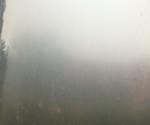dark, night, and rain image