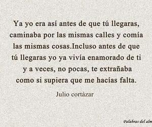 love and julio cortazar image