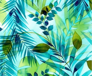 clear, green, and palm trees image