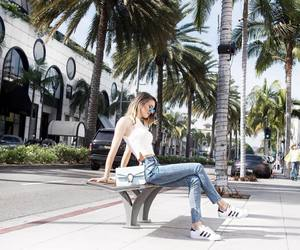 fashion, adidas, and palm trees image
