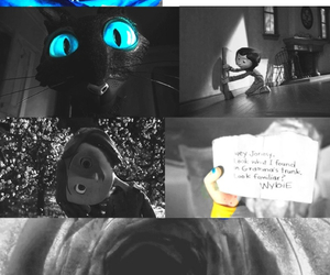 cat and coraline image