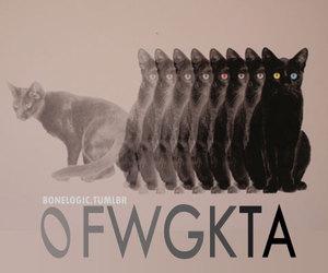 cats, odd future, and ofwgkta image