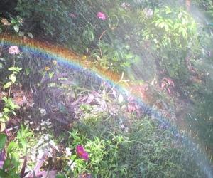 rainbow, aesthetic, and fairy image