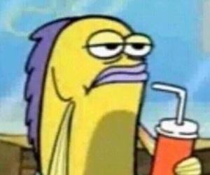 spongebob, meme, and wallpaper image