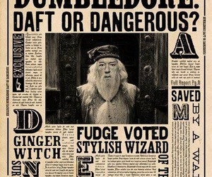 harry potter, dumbledore, and daily prophet image
