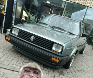 car, me, and monkey image