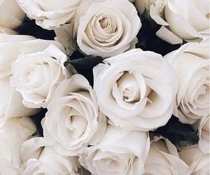 flowers, love, and white image