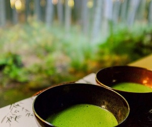 green, light green, and green tea image