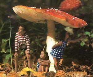 mushroom and kids image