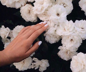 flowers, nails, and beautiful image