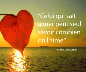 amour, aimer, and citation image