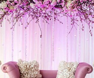 flowers, sofa, and photography image