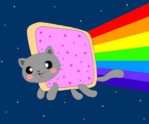 chibi, rainbow, and nyan cat image