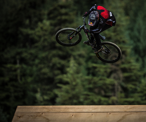 bike, forest, and brandon semenuk image