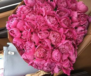 flowers, couples, and gifts image