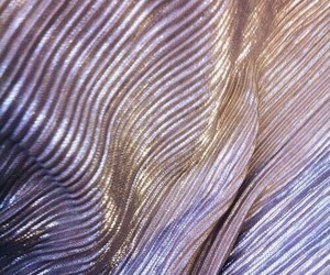 silver and textile image