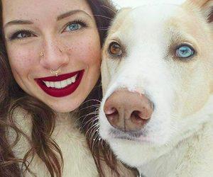 dog and eyes image