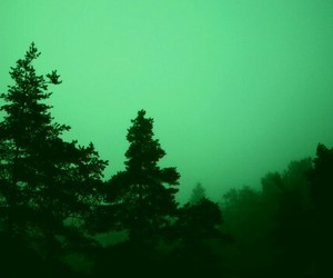 aesthetic, green, and alternative image