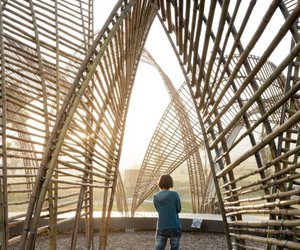 architecture, bamboo, and forest image