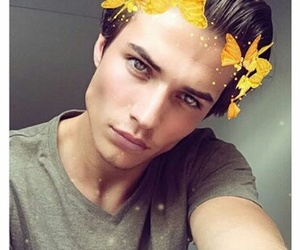 boy, handsome, and butterflies image