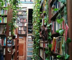 biblioteca, books, and inspiracion image