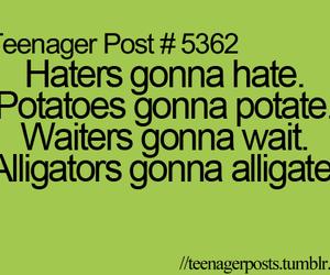 haters, potato, and alligators image