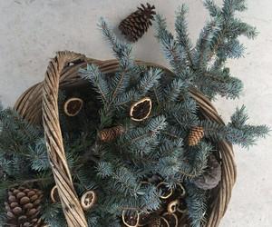 basket, christmas, and christmas tree image