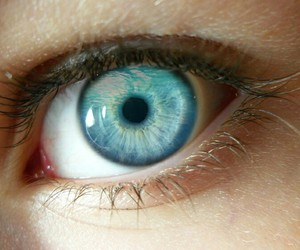 eye, blue, and green image