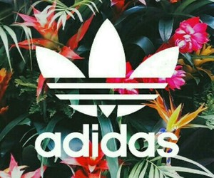adidas, brand, and Logo image