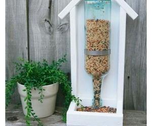 bird, bottle, and diy image