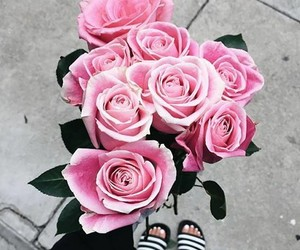 flowers, beauty, and rose image