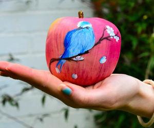 apple, bird, and blue image
