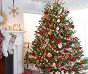christmas, tree, and christmas tree image