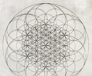 art and flower of life image