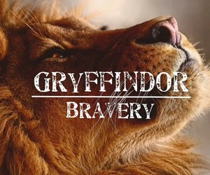 harry potter, bravery, and gryffindor image