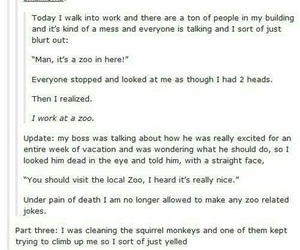 funny, monkey, and post image