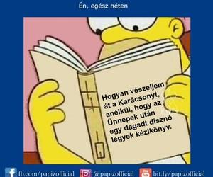 lol and magyar image