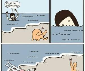 cat, emergency, and meme image