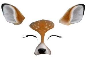bambi, overlay, and stuff image