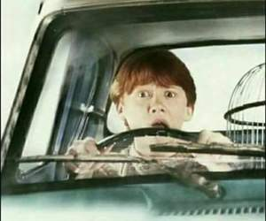 harry potter, ron weasley, and wallpaper image