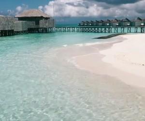 beach, maldivas, and Maldives image