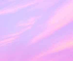 background, pink, and header image