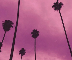 tumblr, palm trees, and sky image