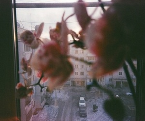 flowers, city, and aesthetic image