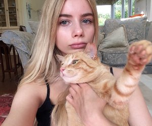 aesthetic, tumblr girl, and cat image