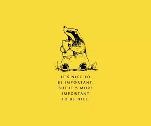 yellow, quotes, and hufflepuff image