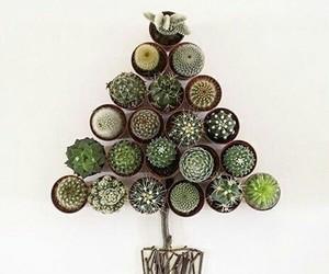 cactus, christmas, and christmas tree image