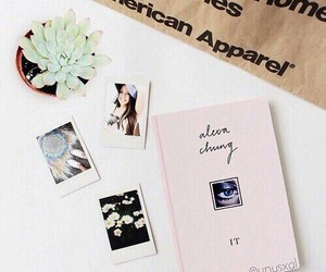 indie, tumblr, and cactus image