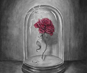rose, art, and disney image