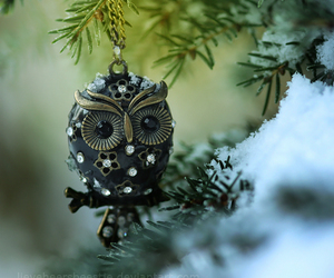 owl, snow, and necklace image
